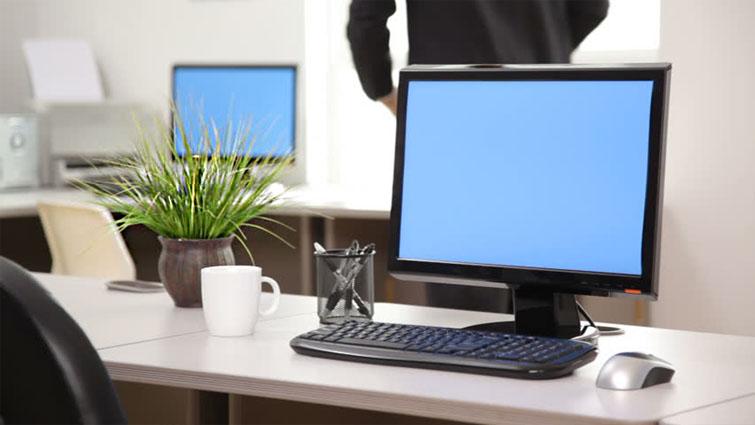تاثیر نگهداری گل و گیاه در منزل و محیط کار