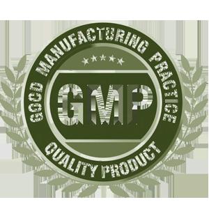 GMP استاندارد
